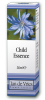 Bach Flower Remedy Child Essence