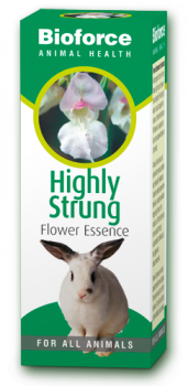 Highly Strugn essence for pets