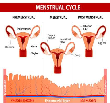 PMS cramps - What is normal?