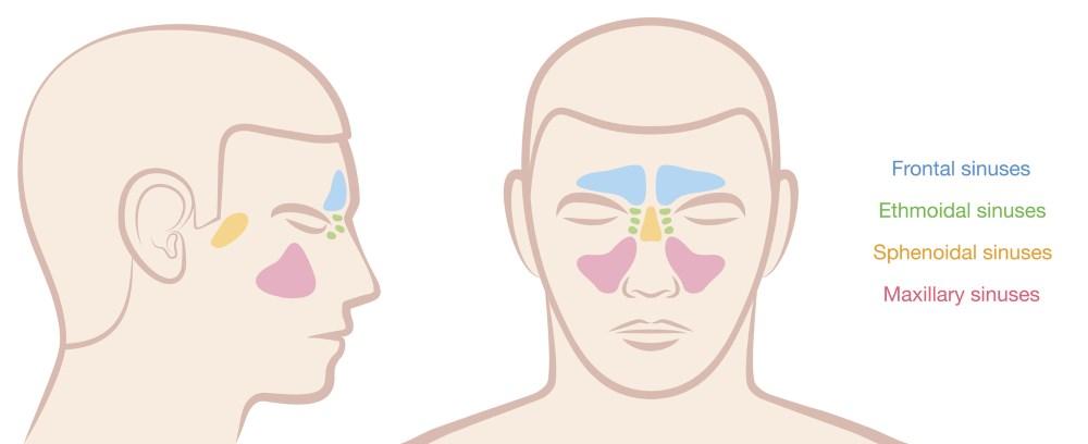 Cold Symptoms  Headache