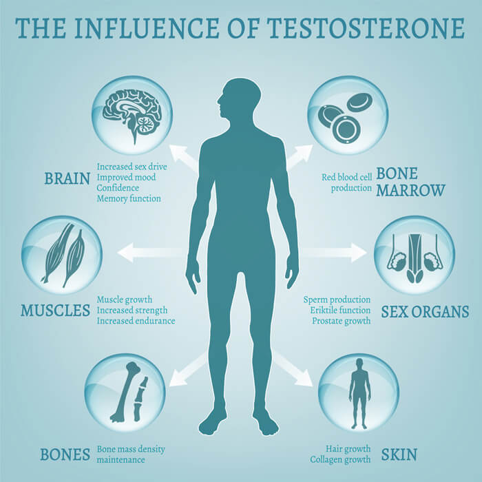 Can lack of testosterone make you tired?