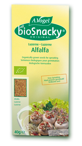 Alfalfa Sprouts From Organic Seeds Using The AVogel BioSnacky Seed