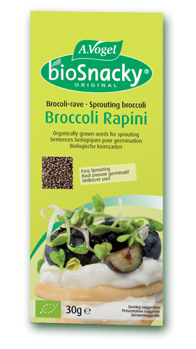 Sprouts From Organically Produced Broccoli Seeds